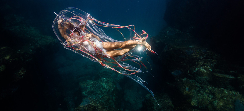 8 killer photography tips you need to know if you're taking pictures - underwater