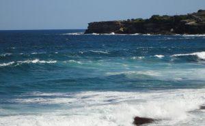 Discover Sydney's 31 Beaches