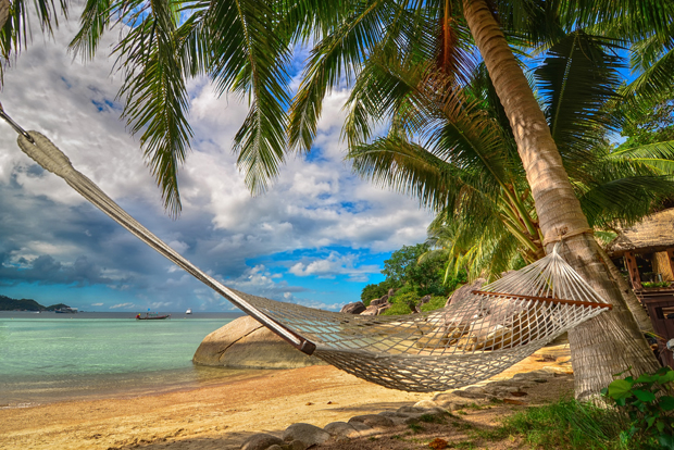 Hammock hanging between two palm trees on the beach