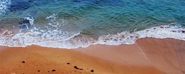 Long Reef Beach