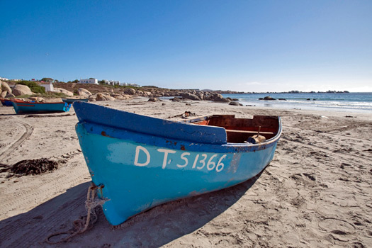 The South African Flower Route: Paternoster. Photo by southafrica.net