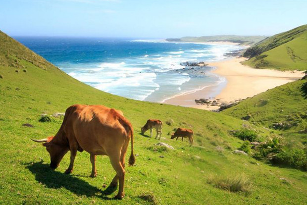 South Africa's Hidden Gems as recommended by bloggers 1